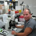 Energy dependent RNA-mediated immunity (6)