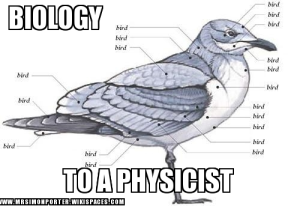 Biology to a Physicist