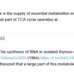 Protonated RNA interference vs stupid theories (9)